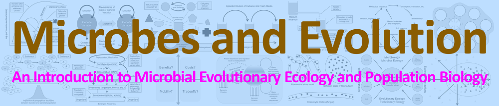 Microbes and Evolution: An Introduction to Microbial Evolutionary Ecology and Population Biology